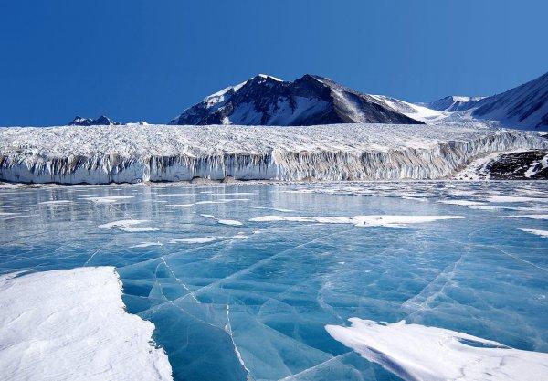 Загадочно спокойный мир Антарктиды - №9