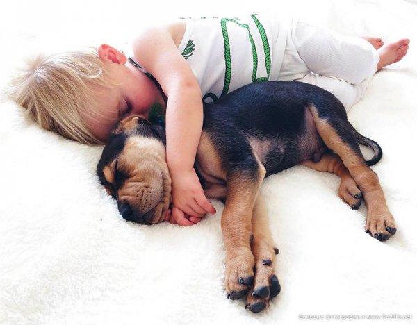 Милые дети и собачки - новый тренд Instagram - №3