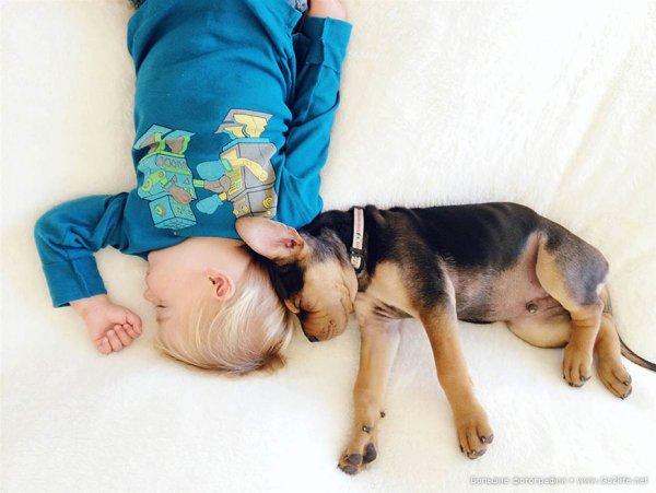 Милые дети и собачки - новый тренд Instagram - №7