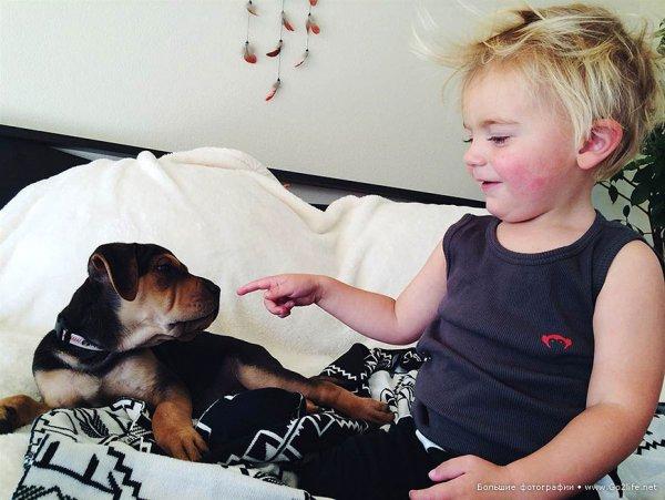 Милые дети и собачки - новый тренд Instagram - №11