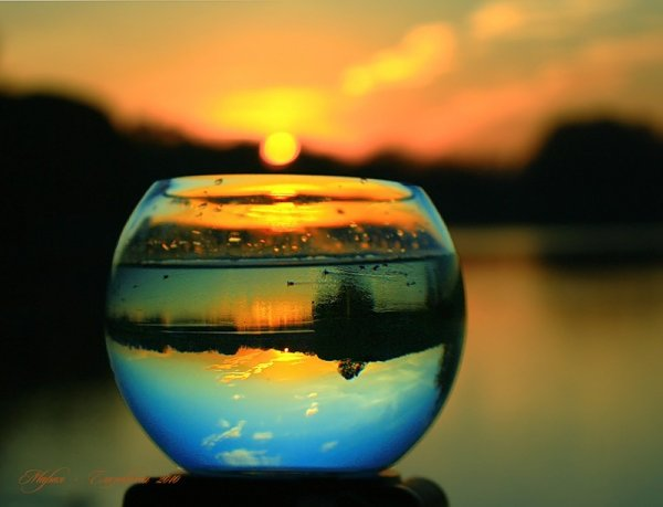 делать зеркальное отражение