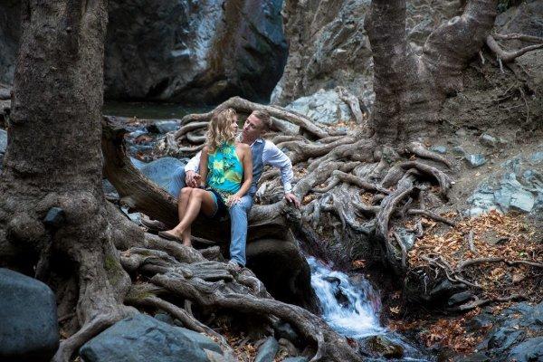 Реликтовый лес в горах Тродос