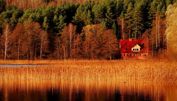 картинки осенний пейзаж