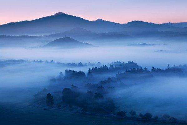 удивительный мир природы