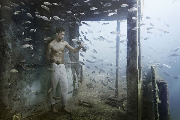 подводный мир фото