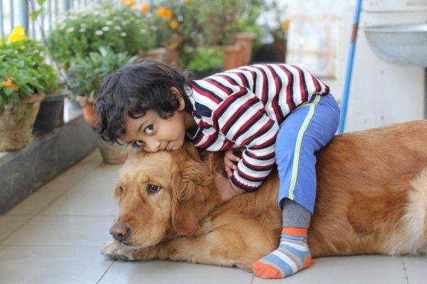 фото собак и детей 4