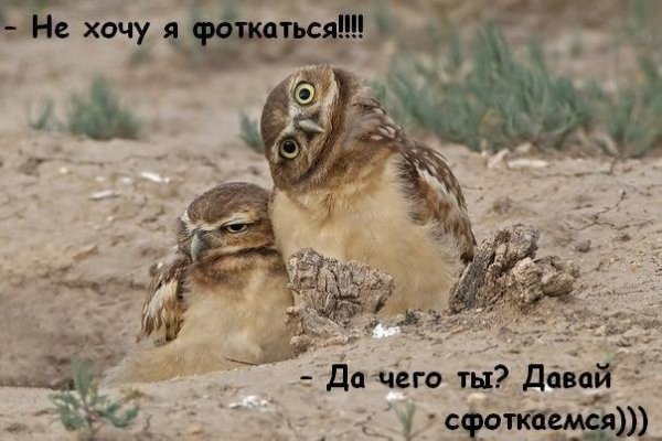 Фото юмор