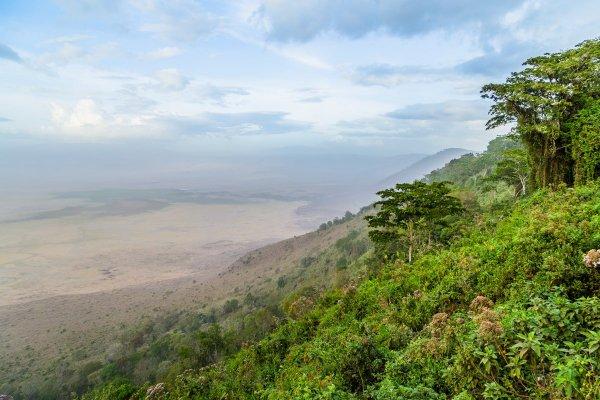 Биосферный заповедник Нгоронгоро