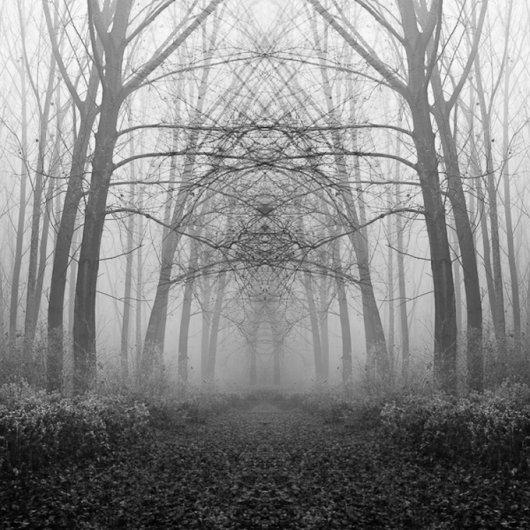 черно-белый пейзаж 8